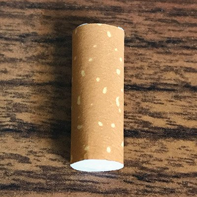 Chasing the CAT Out: Alternative Cigarette Filter Materials
