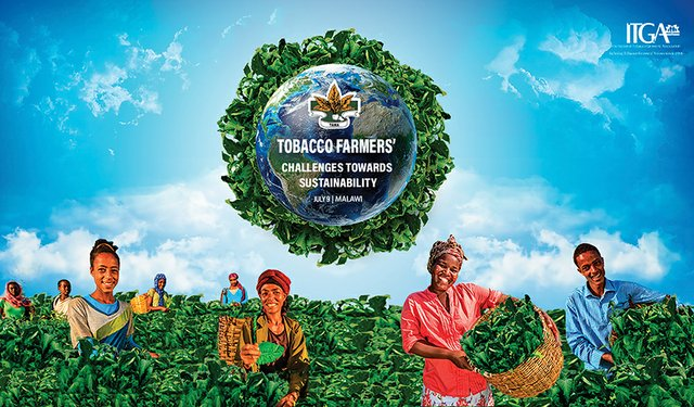 ITGA Situation Update for Tobacco Growers