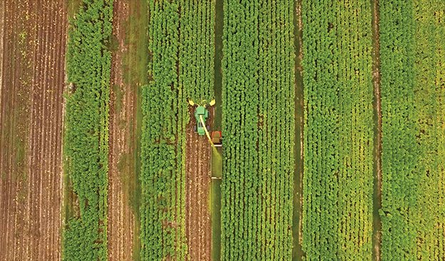 1551-ASIA-Tyton-Harvest-624.jpg